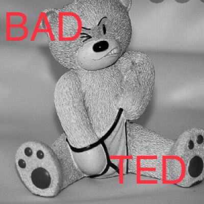 BAD TED